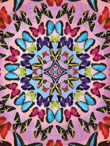 Butterfly Kaleidoscope