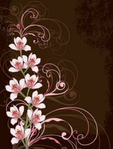 Orchids on Brown
