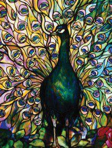 Tiffany – Peacock