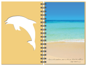 Inside-Page-Seaside_Dolphin