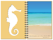 Inside-Page-Seaside_Seahorse