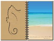 Seahorse – Inside Spread
