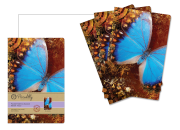 M-Pocket-Memo-blue-butterfly
