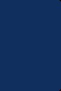 Soft Leatherlook Blue