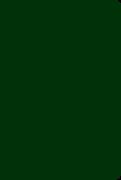 Soft Leatherlook Green