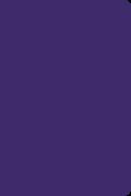Soft Leatherlook Purple