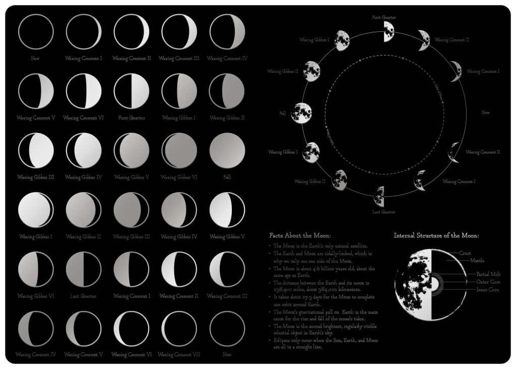 Moon Endpaper with moon phases and facts about the moon