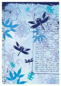 Case Journals